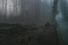 fog-r
