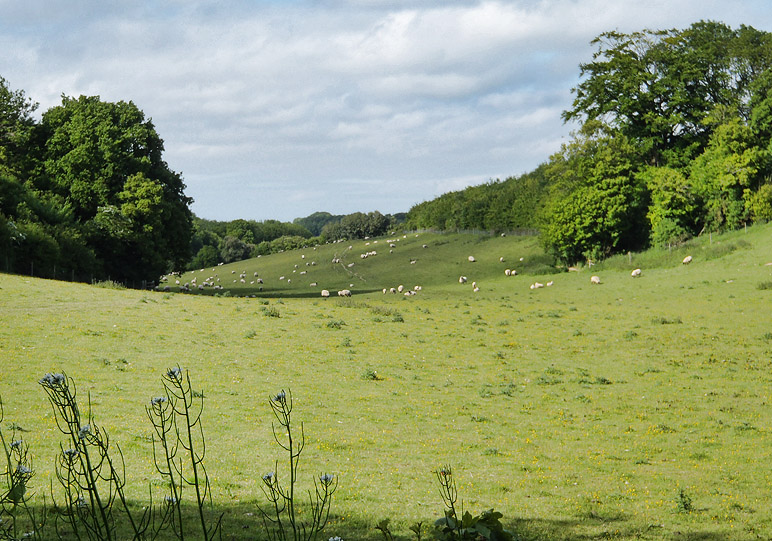 View from Church Road, Hucking