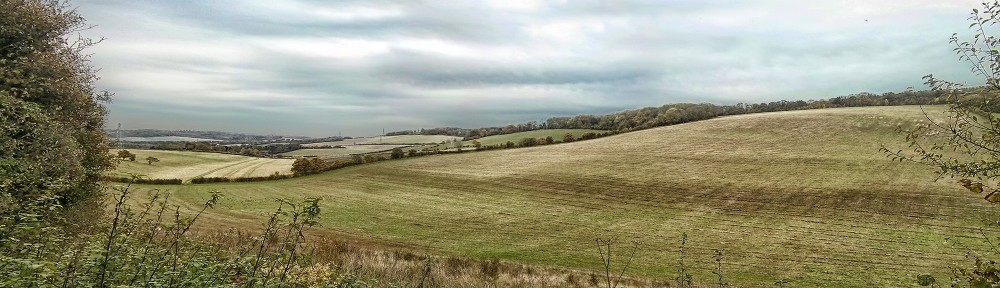View East From Dean Road, Luddesdowne