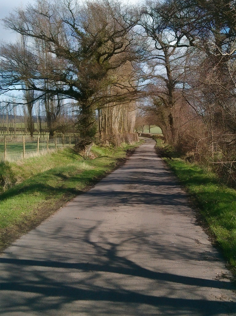 Forsham Lane