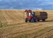 TractorHay r