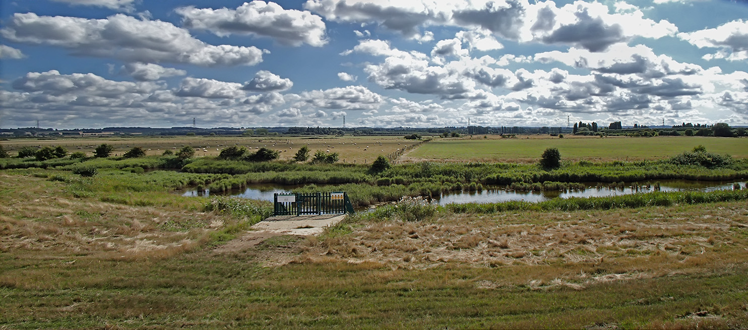 Teynham Level and Luddenham Marshes