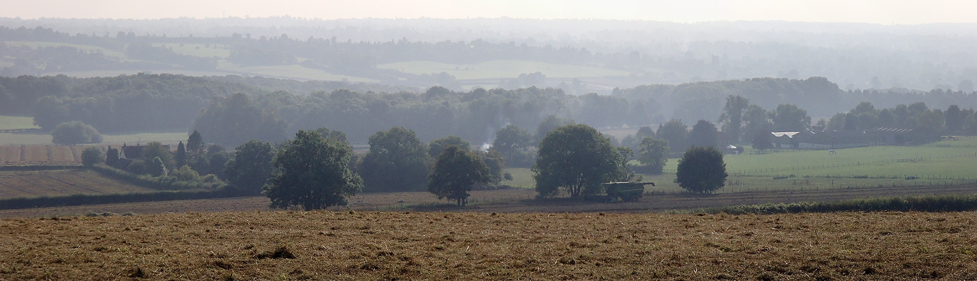 View from Cotman's Ash Lane