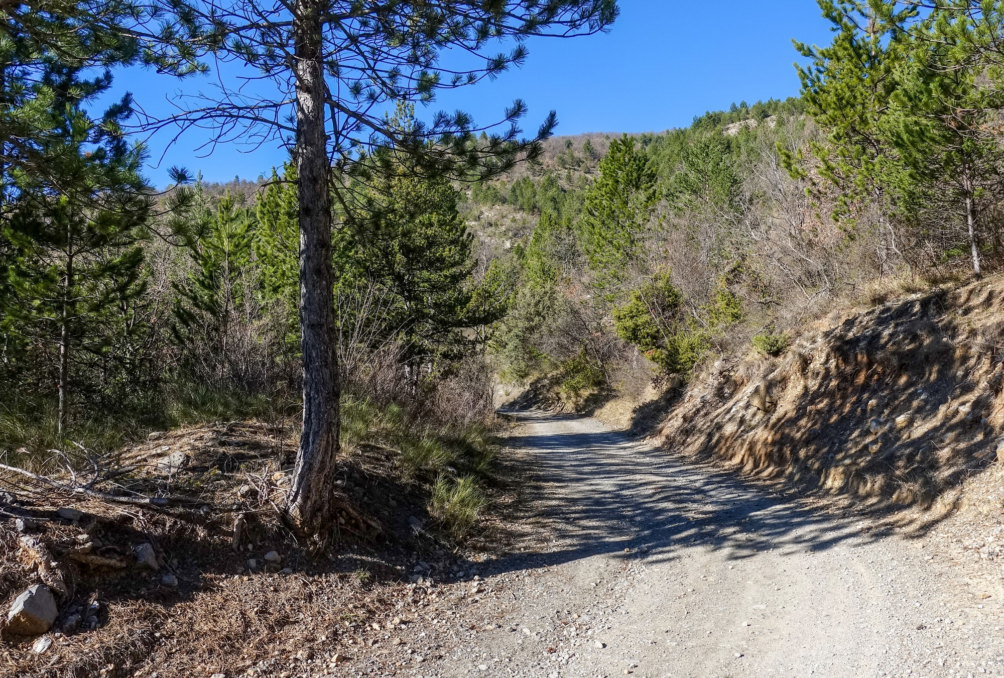 Gravel path out of Puget-Rostang